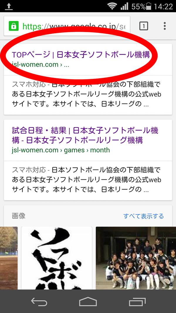 日本女子ソフトボール機構4